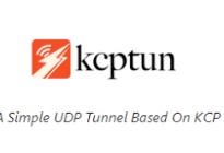 搬瓦工上面安装了Kcptun